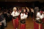 skovde-20111126-193-ms