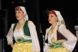 skovde-20111126-222-ht