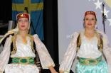 skovde-20111126-223-ht