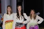 skovde-20111126-250-ht
